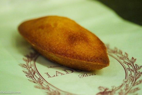 Figure 6. Madeleine biscuit