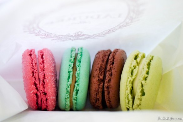 Figure 5. From left: Strawberry candy, Marie Antoinette, Chocolate Ghana, Lily in the valley