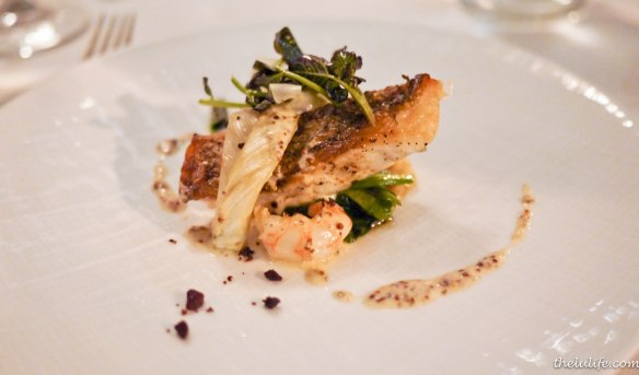 Wild striped bass with rock shrimp, mustard and fennel